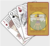 Wilderness Medicine Playing Cards